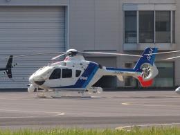 FT51ANさんが、東京ヘリポートで撮影したオールニッポンヘリコプター EC135T2の航空フォト(飛行機 写真・画像)