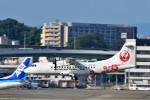 JA946さんが、伊丹空港で撮影した日本エアコミューター ATR-42-600の航空フォト(写真)