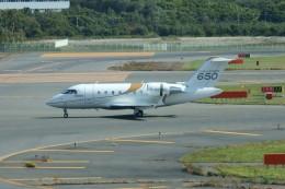 しんさんが、新千歳空港で撮影したボンバルディア・エアロスペース CL-600-2B16 Challenger 650の航空フォト(写真)