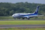 Sugikiyoさんが、岡山空港で撮影した全日空 737-881の航空フォト(写真)