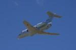 SmithNewmanさんが、入間飛行場で撮影した航空自衛隊 U-125A(Hawker 800)の航空フォト(写真)