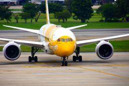 まいけるさんが、ドンムアン空港で撮影したスクート 787-8 Dreamlinerの航空フォト(飛行機 写真・画像)