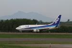 sasukeさんが、女満別空港で撮影した全日空 737-781の航空フォト(写真)