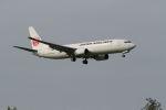 クルーズさんが、成田国際空港で撮影した日本航空 737-846の航空フォト(写真)