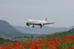 神宮寺ももさんが、高松空港で撮影した日本航空 767-346の航空フォト(写真)