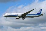 tomoMTさんが、成田国際空港で撮影した全日空 787-9の航空フォト(写真)