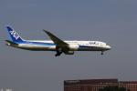 VFRさんが、成田国際空港で撮影した全日空 787-9の航空フォト(写真)