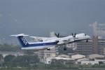 ぬま_FJHさんが、伊丹空港で撮影したANAウイングス DHC-8-402Q Dash 8の航空フォト(写真)