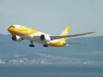 倉島さんが、関西国際空港で撮影したスクート 787-8 Dreamlinerの航空フォト(写真)