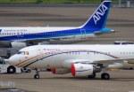 KAZKAZさんが、羽田空港で撮影したマレーシア空軍 A319-115X CJの航空フォト(写真)