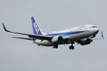 KoshiTomo✈さんが、成田国際空港で撮影した全日空 737-881の航空フォト(写真)