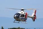 トールさんが、静岡空港で撮影した本田航空 EC135P2の航空フォト(写真)