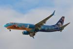 小弦さんが、バンクーバー国際空港で撮影したウェストジェット 737-8CTの航空フォト(写真)