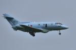 falconさんが、松島基地で撮影した航空自衛隊 U-125A (BAe-125-800SM)の航空フォト(写真)