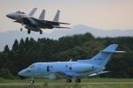 DONKEYさんが、新田原基地で撮影した航空自衛隊 U-125A (BAe-125-800SM)の航空フォト(写真)