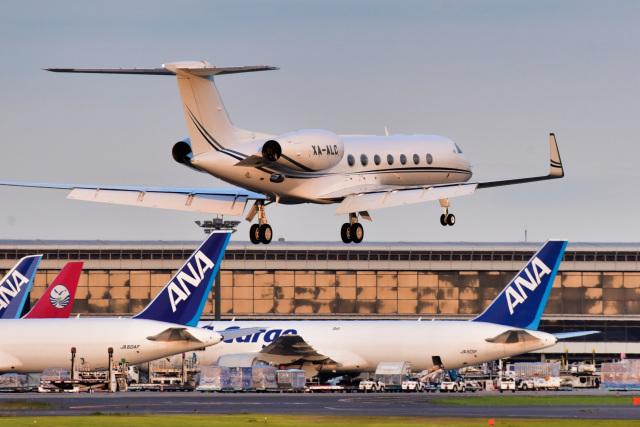 パンダさんが、成田国際空港で撮影したメキシコ企業所有 G-V-SP Gulfstream G550の航空フォト(飛行機 写真・画像)