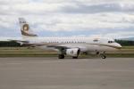 北の熊さんが、新千歳空港で撮影したリライアンス・インダストリーズ A319-115CJの航空フォト(写真)