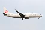 Echo-Kiloさんが、新千歳空港で撮影した日本航空 737-846の航空フォト(写真)