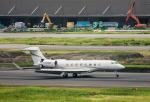 HND_fanさんが、羽田空港で撮影した中国個人所有の航空フォト(写真)