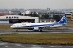 レドームさんが、宮崎空港で撮影した全日空 A321-272Nの航空フォト(写真)
