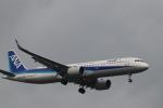 imosaさんが、羽田空港で撮影した全日空 A321-272Nの航空フォト(写真)