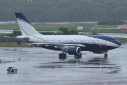 sky77さんが、成田国際空港で撮影したアラバスコ A310-304の航空フォト(写真)