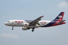 xingyeさんが、プノンペン国際空港で撮影したバッサカ・エア A320-214の航空フォト(飛行機 写真・画像)