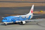 Joshuaさんが、中部国際空港で撮影した日本トランスオーシャン航空 737-4Q3の航空フォト(写真)