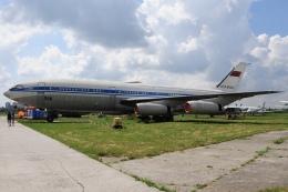 ちゅういちさんが、キエフ・ジュリャーヌィ国際空港で撮影したアエロフロート・ソビエト航空 Il-86の航空フォト(飛行機 写真・画像)