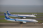 motokimuさんが、羽田空港で撮影した全日空 A321-272Nの航空フォト(写真)