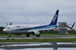 じーのさんさんが、八丈島空港で撮影した全日空 737-881の航空フォト(写真)