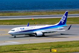 delawakaさんが、中部国際空港で撮影した全日空 737-881の航空フォト(飛行機 写真・画像)