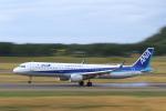 くろネコさんが、庄内空港で撮影した全日空 A321-211の航空フォト(写真)