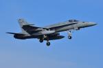 はるかのパパさんが、岩国空港で撮影したアメリカ海軍 F/A-18C Hornetの航空フォト(写真)