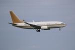 やまけんさんが、羽田空港で撮影した南山公務 737-7ZH BBJの航空フォト(写真)