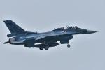 falconさんが、松島基地で撮影した航空自衛隊 F-2Bの航空フォト(写真)