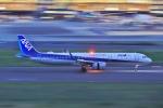 O-TOTOさんが、羽田空港で撮影した全日空 A321-272Nの航空フォト(写真)