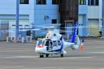 hidetsuguさんが、札幌飛行場で撮影したオールニッポンヘリコプター AS365N2 Dauphin 2の航空フォト(写真)
