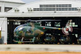 YZR_303さんが、八尾空港で撮影した陸上自衛隊 OH-6Dの航空フォト(飛行機 写真・画像)