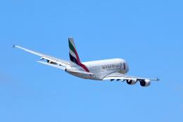 LAX Spotterさんが、ロサンゼルス国際空港で撮影したエミレーツ航空 A380-861の航空フォト(写真)