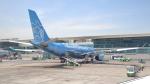 誘喜さんが、アタテュルク国際空港で撮影したエティハド航空 A330-243の航空フォト(写真)