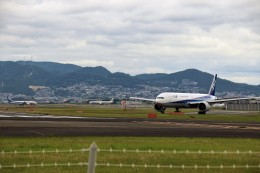 HK Express43さんが、伊丹空港で撮影した全日空 777-381/ERの航空フォト(写真)