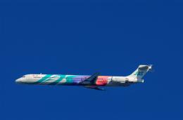 YZR_303さんが、伊丹空港で撮影した日本航空 MD-90-30の航空フォト(飛行機 写真・画像)