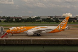 takaRJNSさんが、ドンムアン空港で撮影したスクート 787-8 Dreamlinerの航空フォト(飛行機 写真・画像)