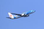 気分屋さんが、羽田空港で撮影した日本トランスオーシャン航空 737-8Q3の航空フォト(飛行機 写真・画像)