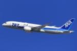 気分屋さんが、羽田空港で撮影した全日空 787-8 Dreamlinerの航空フォト(飛行機 写真・画像)