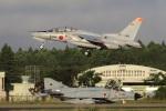 ハルモンさんが、茨城空港で撮影した航空自衛隊 T-4の航空フォト(写真)