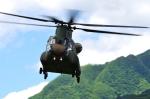 SAMBAR-2463さんが、相馬原駐屯地で撮影した陸上自衛隊 CH-47Jの航空フォト(写真)