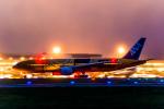 Cygnus00さんが、新千歳空港で撮影した全日空 777-281/ERの航空フォト(写真)