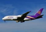 じーく。さんが、成田国際空港で撮影したタイ国際航空 A380-841の航空フォト(写真)